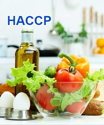 TRAINING – CERTIFICATION HACCP